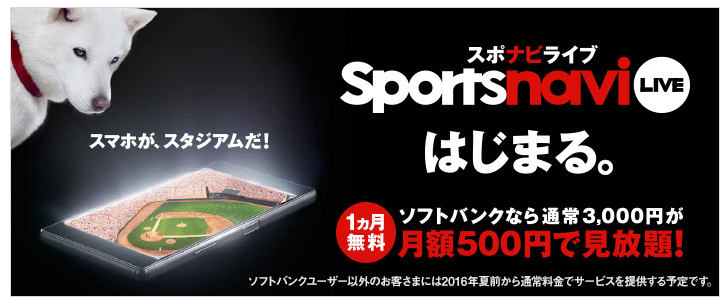 相撲のネットLive中継!SoftBankの「スポナビライブ」がサービス開始 プレミア/リーガも全試合ライブ